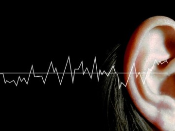 Hearing. Conceptual image showing sound waves and a woman's ear. This represents the sound waves that are heard when listening to sounds with the ears. The human ear can hear sounds in a frequency range of 20 Hertz to 20,000 Hertz, and sound levels from 0 to 130 decibels.